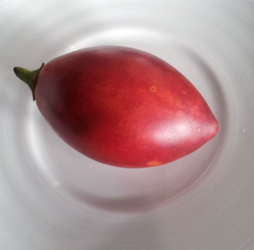 Tomate Englisch
