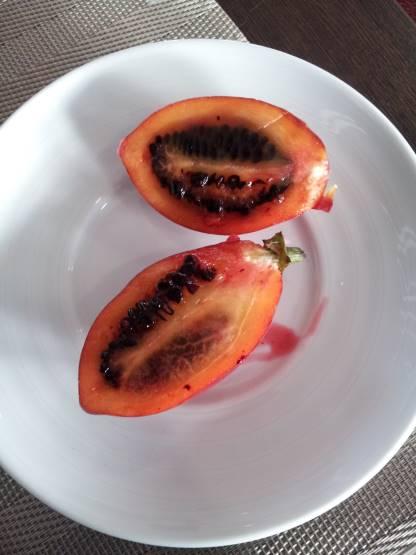English tomato3