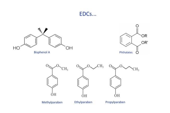 edcs-substances